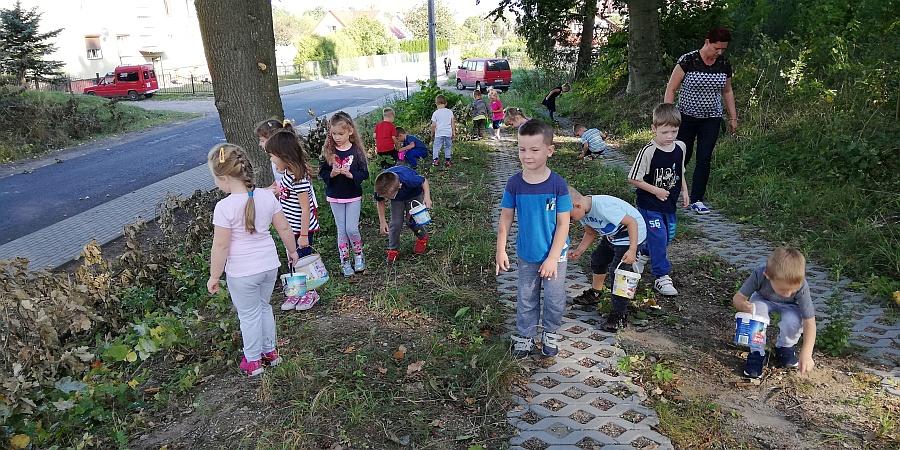 Zespół Szkół w Biesowicach Zbieraliśmy kasztany i żołędzie